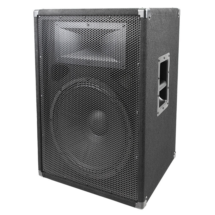 2019 Passive DJ PA Sound System Subwoofer Party Speakers