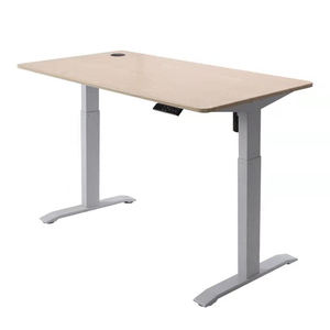 Custom OEM Popular Height Tech Table Standing Electric Adjustable Height Desk Wholesale
