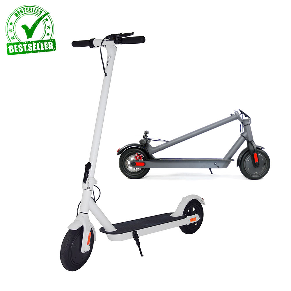 BWIN Original 2019 New Arrival Max PRO Electric Step 300w electric motor powered Scooter adult
