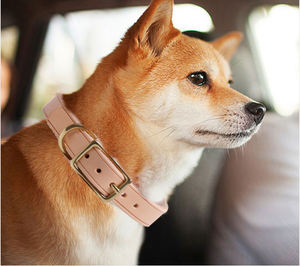 New Fashion E Unique Solid Plain Blank Italian Durable Real Leather Dog Collar