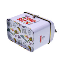 Wholesale OEM factory custom metal lunch tin box with handle metal tin food storage box with handle