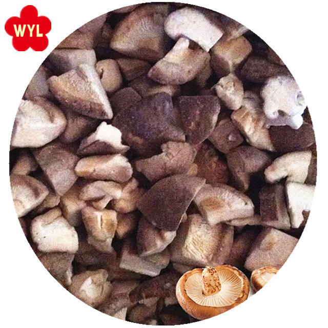 supply good quality mushroom iqf frozen shiitake cut 1/4 cut