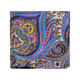 New colorful paisley men's silk hanky