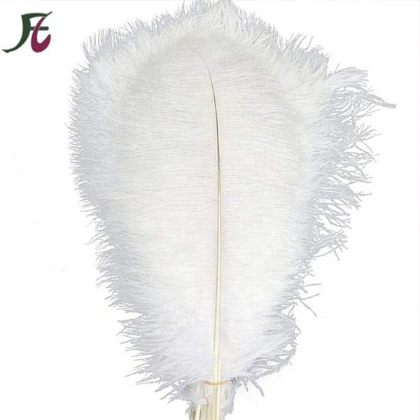 Wholesale fashion colorful Natural Ostrich Feathers for wedding party table Decorations