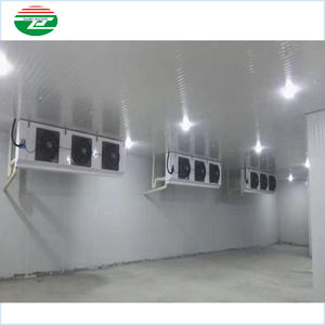 Industrial food store cool room 40ft blast freezer container mobile walk in refrigeration unit cold storage