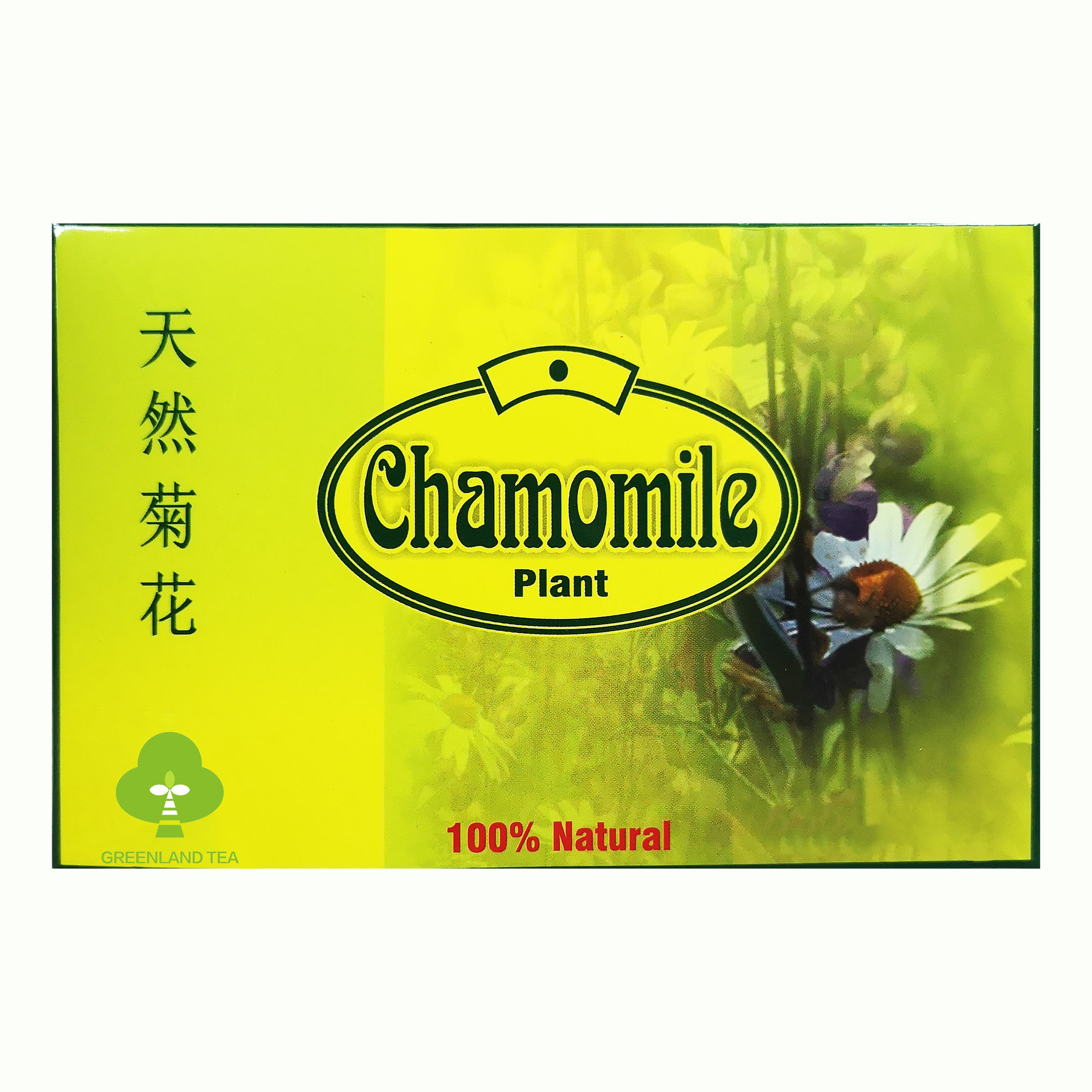 Healthy herbal green tea bag China custom teabag without extra flavor