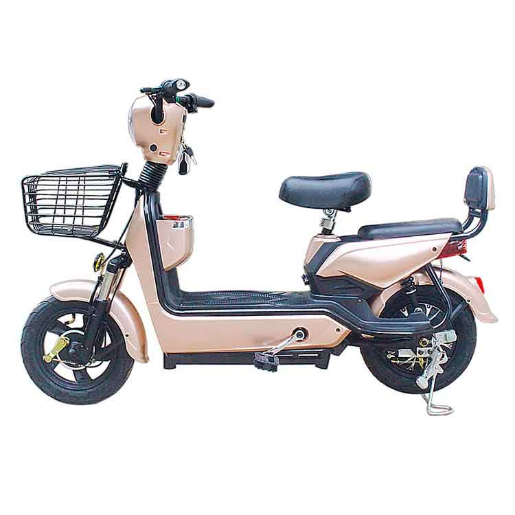 High Power 350ワットMotor With 48V 12ah Battery Lithium Bike Buy Electric Bicycle
