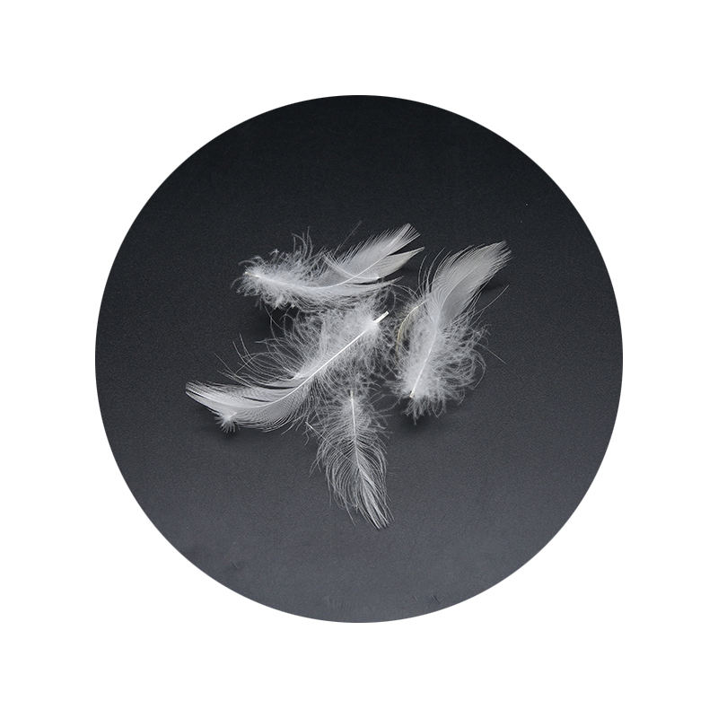 Soft Cheap White / Grey Duck Feathers for Sale YR0003