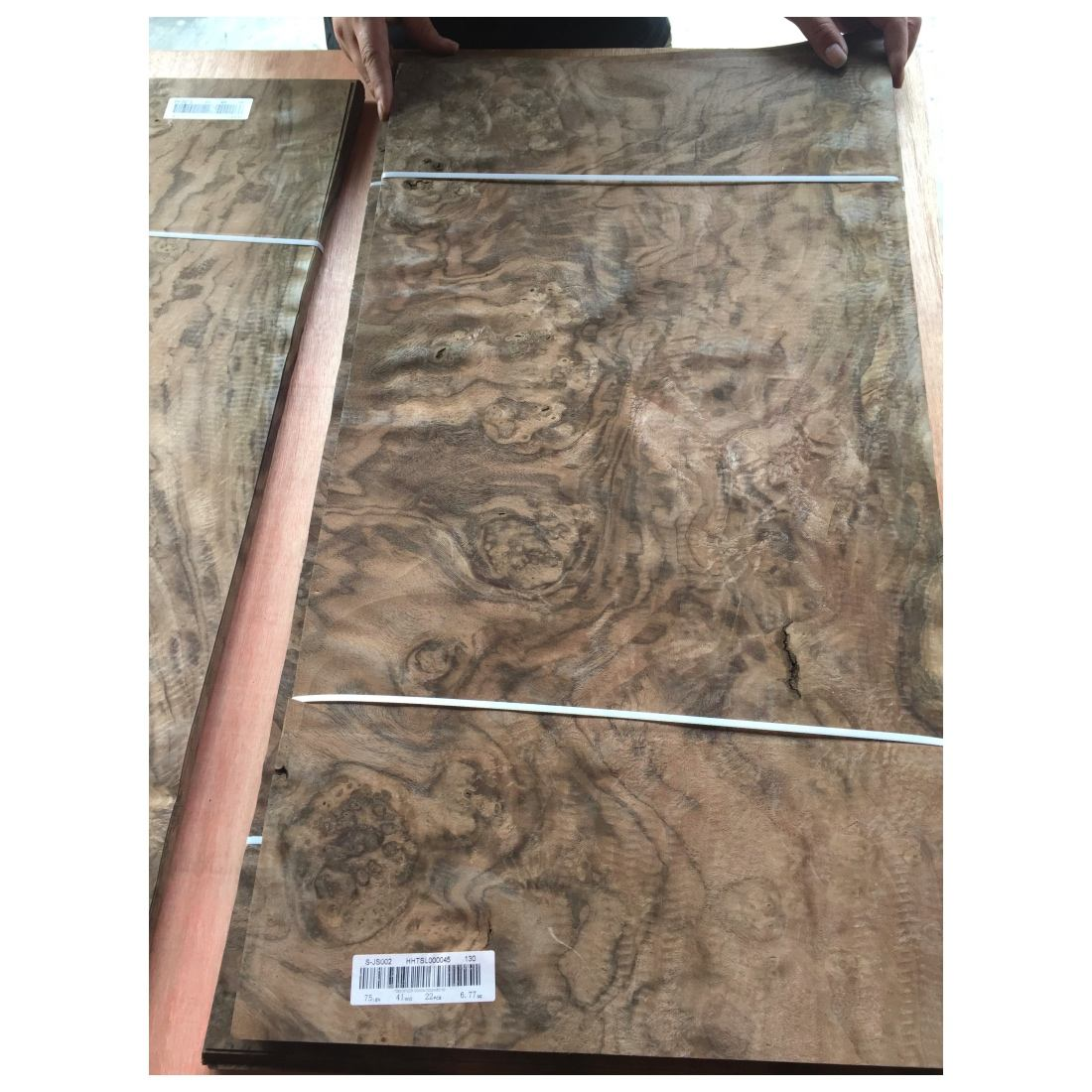 Fancy Black Walnut Burl Wood Veneer for Modern Furniture Decoration