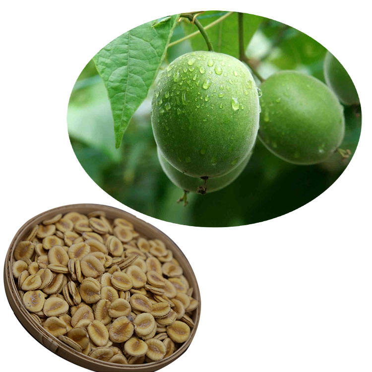 2020 Fresh luo han guo monk fruit seeds for planting