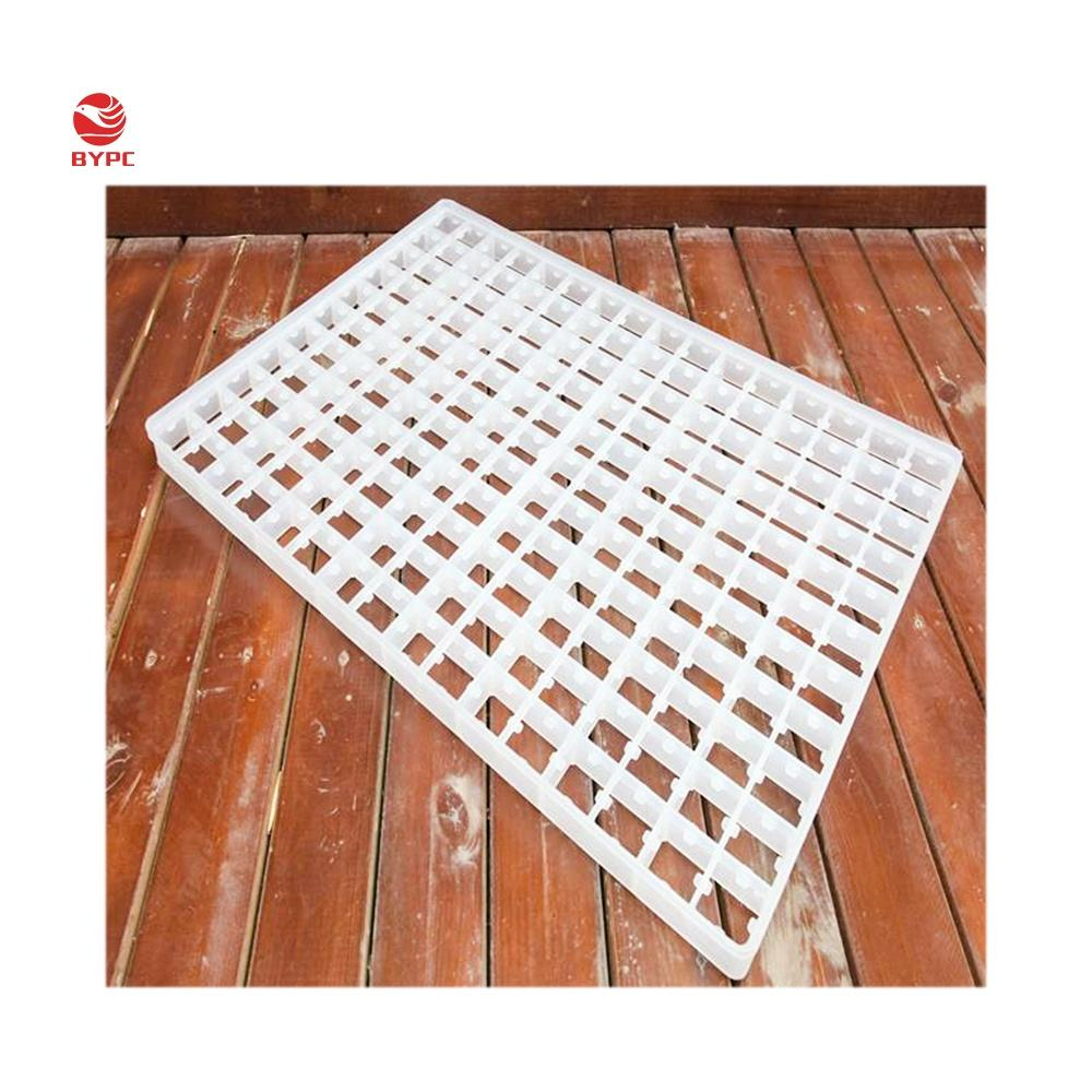 88 / 176 / 150 cells plastic chicken egg tray