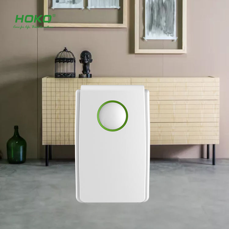 HOKO the affordable HEPA air purifier home,then air purifier importer most like filter system