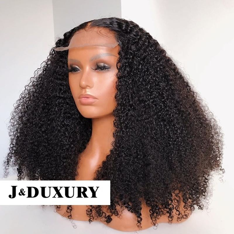 grade 10A REMY virgin human brazilian hair full lace Pre Plucked Lace Wig swiss Lace Front Human Hair Wigs With Baby Hair