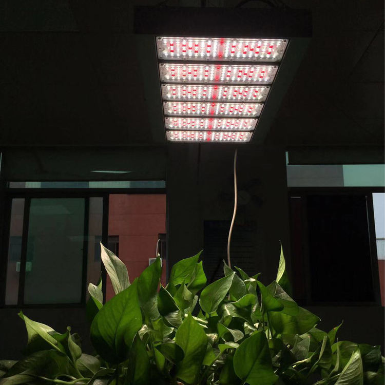 meanwell драйвер 5 лет гарантии 9odegree Оптический Объектив Высокая ppfd Samsung 301b led модели светодиодные светать