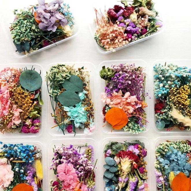 wholesale 1 Box lavender Random Mix Dried Flower Plant for Resin Jewelry Dry Plants Pressed Flowers Making Craft DIY Accessories