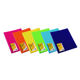 Plastic File Folder PP Clear Display Book