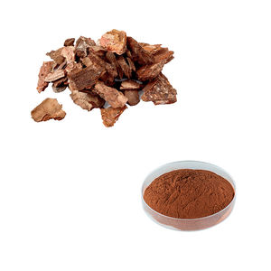 Factory Supply High Quality Pine Bark Extract Powder