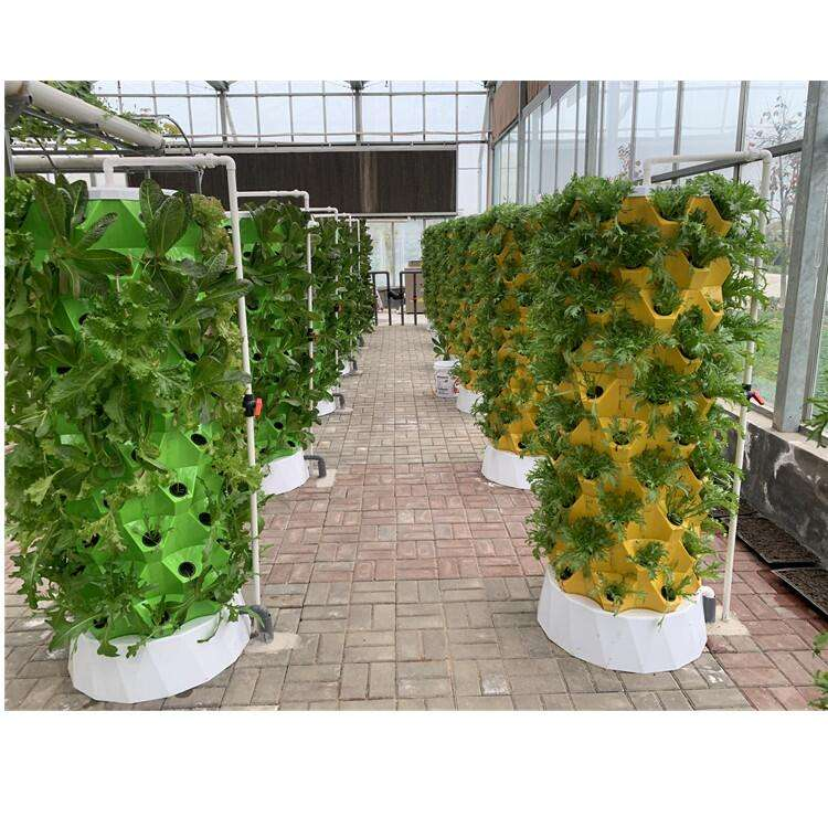 Skyplant Pineapple Type Vertical Hydroponic Planting system Home Garden Grow Kit Indoor System Indoor Plant Growing Systems