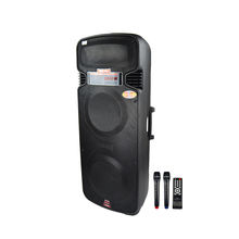 TEMEISHENG Double 15 inch speaker sound system survival tool