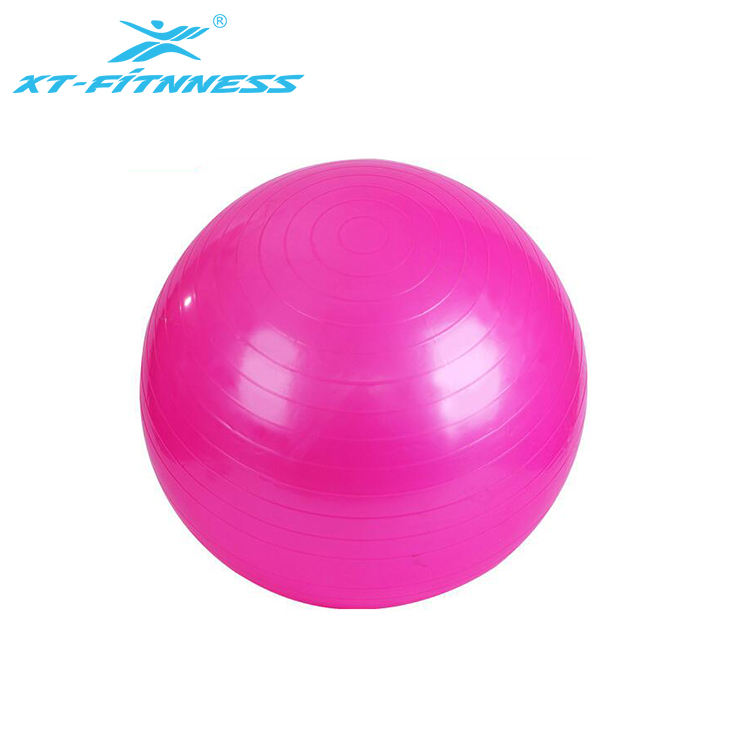 Wholesale 55cm Fitness yoga balance exercise trainer ball