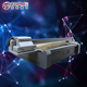 Topme F3220-R5 made in China factory price best Ricoh Gen 5 diy uv led printer