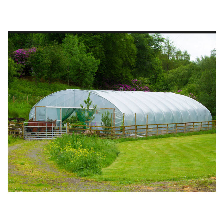 single span poly house agriculture greenhouse