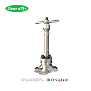 High Pressure and General Application Cryogenic Globe Valve