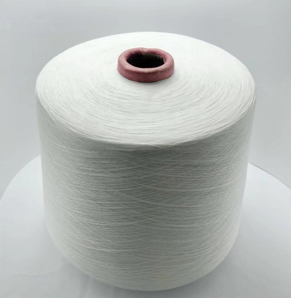 Free sample New Arrival cotton Yarn 100 %Tencel Eco-Friendly For Knitting Sweaters