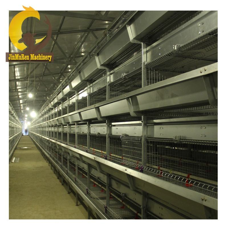 Automatic chicken rearing cage/poultry farm equipment/chicken house complete farming system