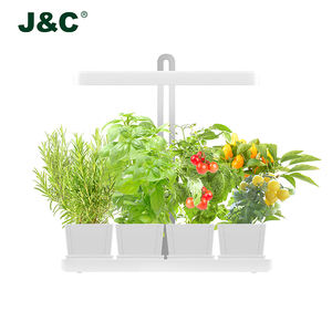 Exquisite Herb Garden Kit To Dazzle Up Your Decor Alibaba Com