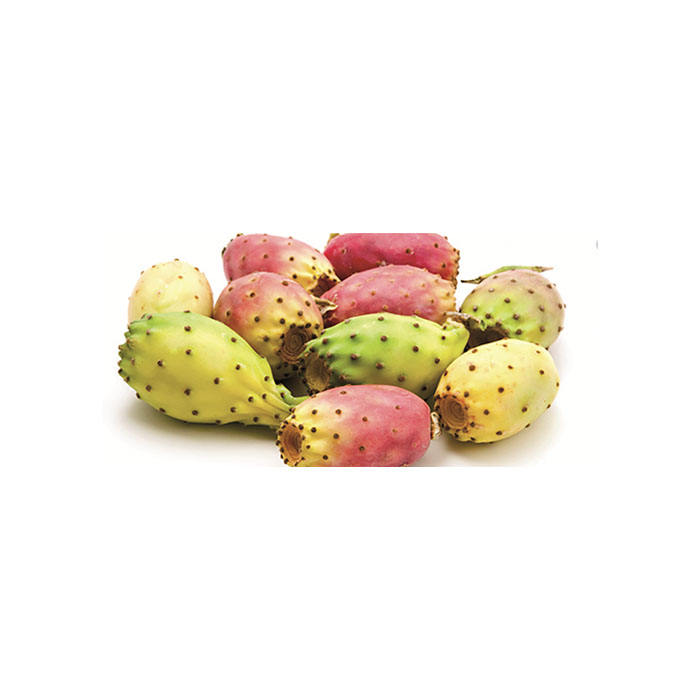 Wholesale fresh exotic fruit prickly pear barbary fig fresh tasty cactus fruit