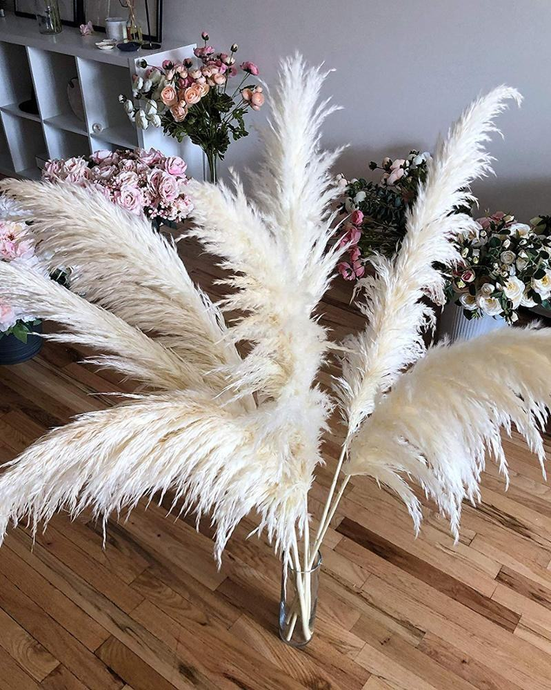 Pampas Grass Royal White Extra Fluffy 3 stems Large 46'' - Home Decor Boho Dry Wedding Plant