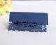 Luxury Wedding Laser Stereo Seat Card Hollow Leaf Table Card White Butterfly Name Sign-in Desk Business Meeting Use