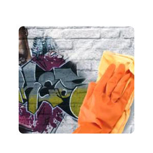 Silicon Dioxide Anti-Graffiti Clear Paint Building Coating