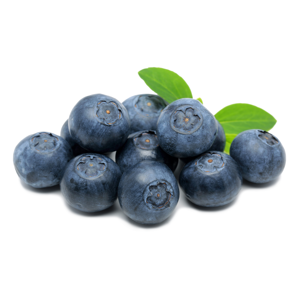 Mexico Grown Blue Berries Blueberry Robinson Fresh MOQ 12x 6 Ounce Quick Delivery in US