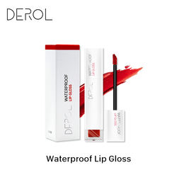 DEROL high quality matte lip Glaze Non fading Lip oem no name waterproof long-lasting matte lip gloss