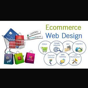 E-commerce Website Via Perfect Ontwikkeld Plugin En High End Module