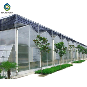 Hot sale polycarbonate greenhouse agriculture with irrigation&hydroponics equipment