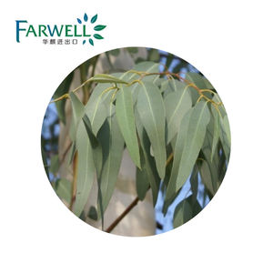 Farwell Hot Sell CAS#8000-48-4 Natural Eucalyptus Essential Oil 80% Globulus