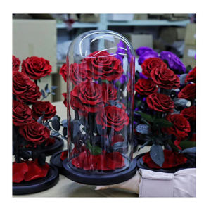 Wholesale Best Quality glass dome cloche bell jar preserved flower rose glass dome large