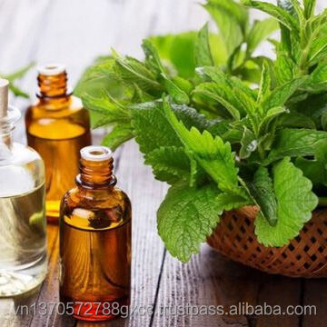 100% pure natural mint essential oil for cosmetics, soap making, massage, flavor and fragrance oil