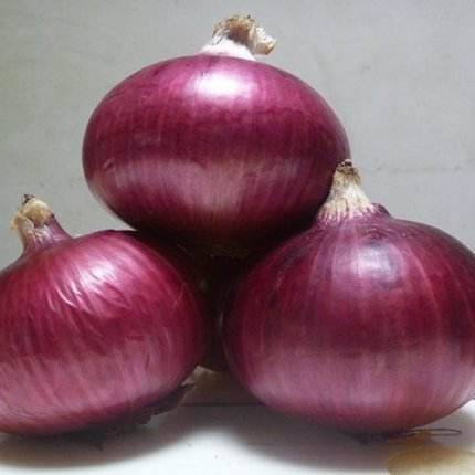 Hot Selling Good Quality Onian Imports Onion For Wholesale
