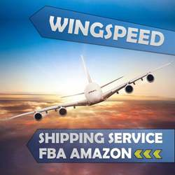 Amazon FBA air shipping China to Germany DDP Including Customs Clearance Import Tax and Duty-skype: bonmedjoyce
