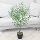 New Design Wholesale Artificial Olive Tree Faked Faux Olive Tree Plant for Home Office Shopping Mall Store Decoration