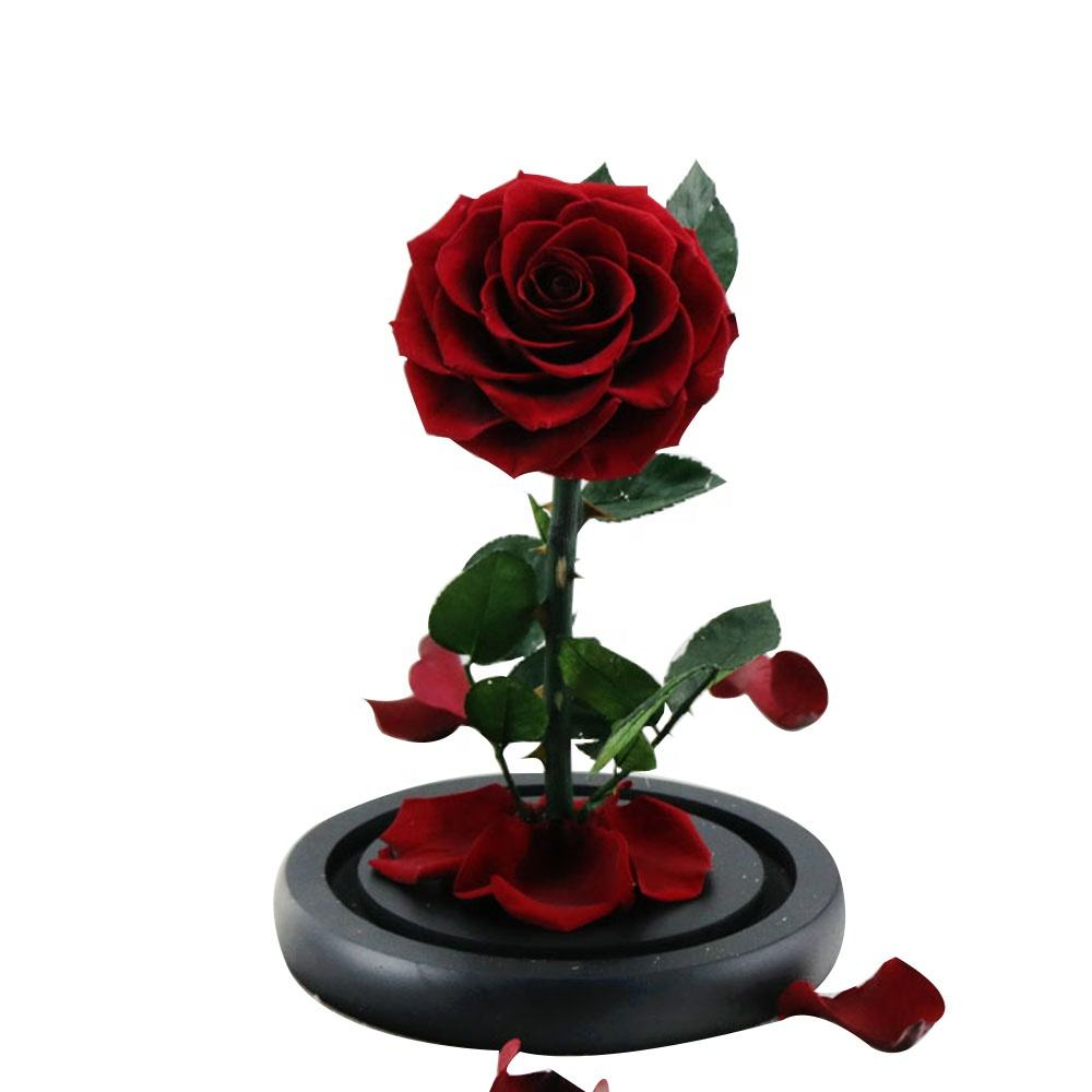 Hot Selling Christmas Gifts Better Together S Crystal Glass Enchanted Rose Beauty And The Beast Flower Buy Hot Selling Christmas Gifts Crystal Glass Rose Flower Enchanted Rose Beauty And The Beast Product On
