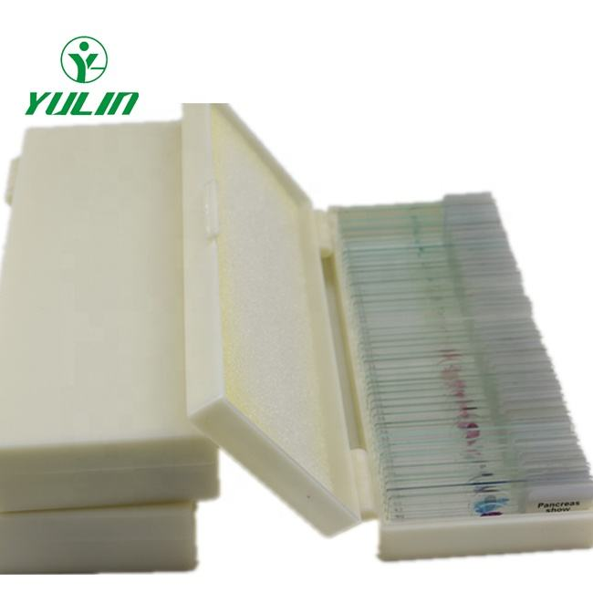 Teaching resources biological prepared microscope slides with high quality and low price