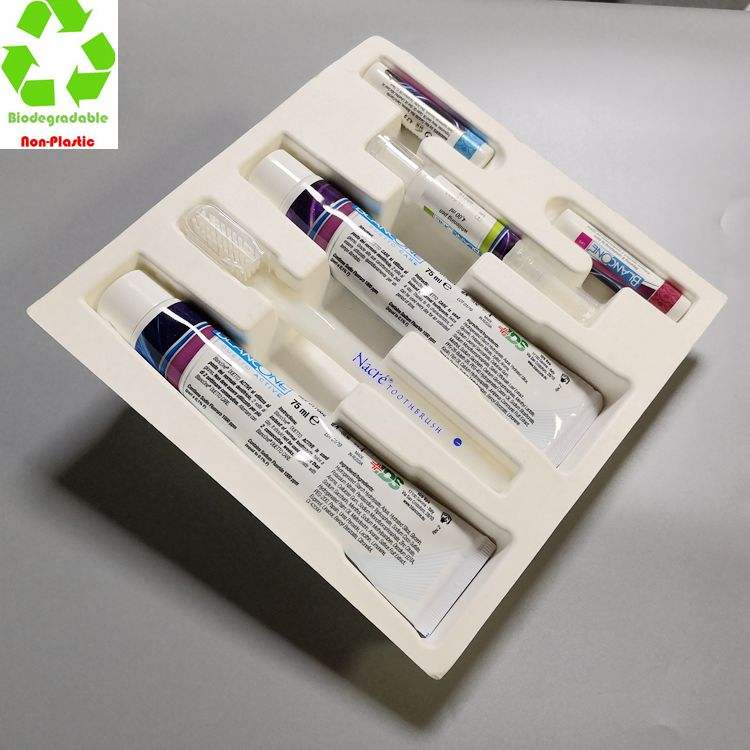 Customized Biodegradable Molded Paper Pulp Oral Care Packaging Box insert
