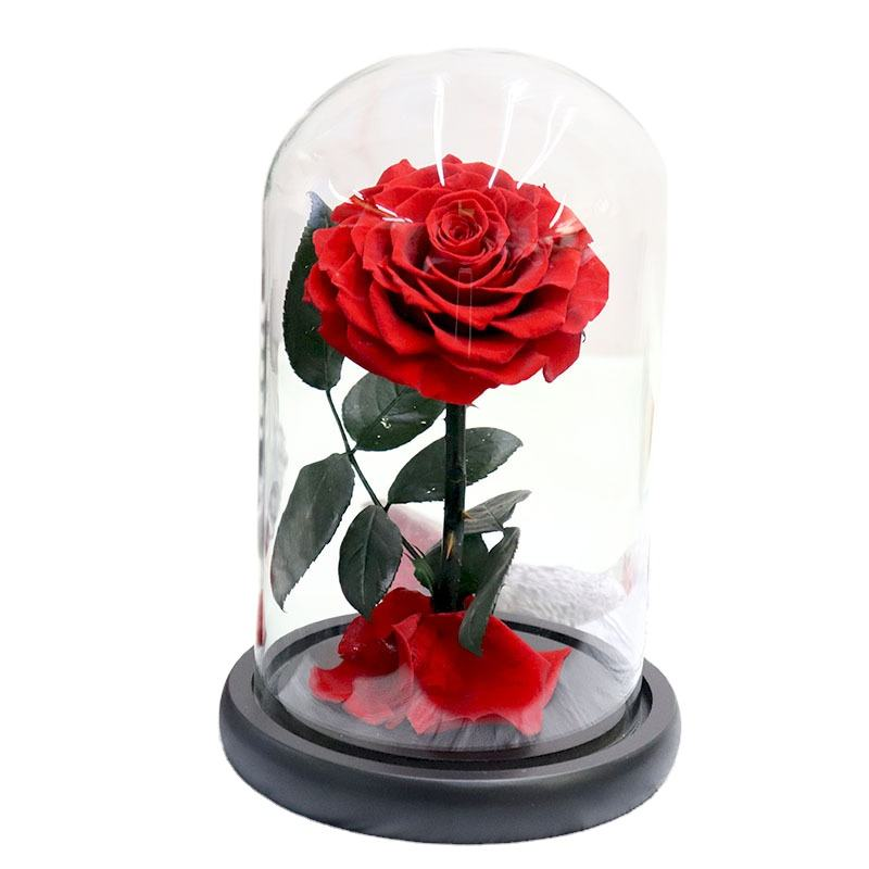New Product Ideas Luxury Gift Sets Valentine Wedding Favors Eternal Forever Flower Preserved Rose in Glass Dome