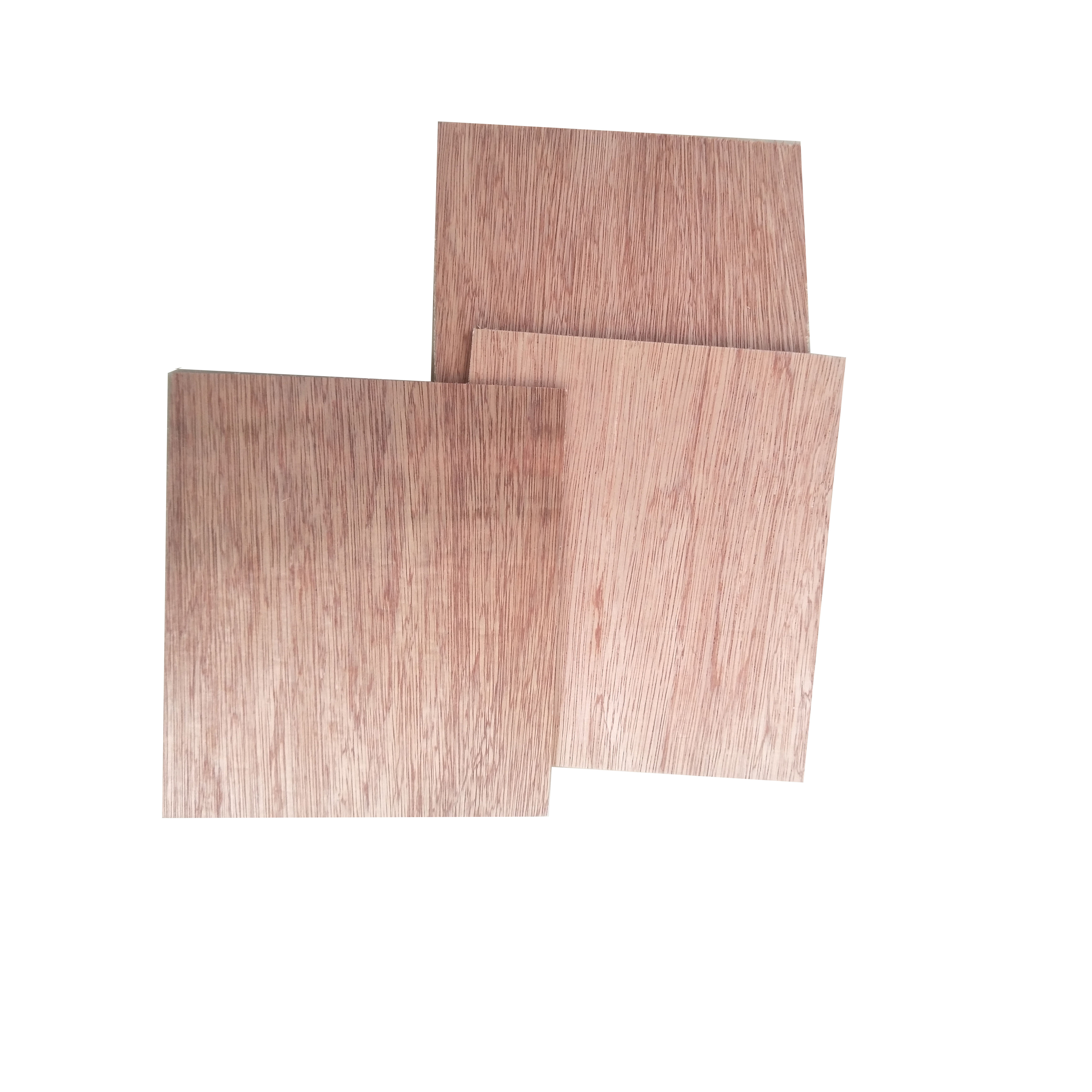 High Technological 1 Pc Ply Wood Water Resistance Marine Larch Red Oak Plywood For Construction