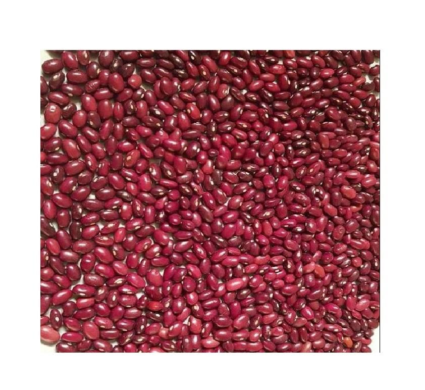 hot sale high quality export new crop dry light red kidney beans
